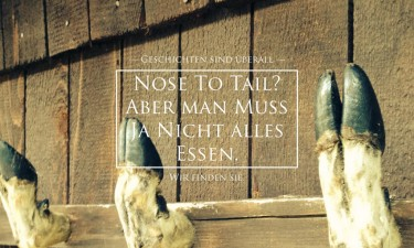 nose to tail storytelling